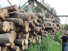 Покупаем дрова акации и дуба (кругляк и чушки)