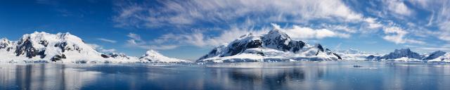 Скинали «Арктика»