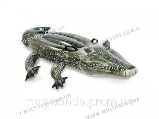 232083. Крокодил 170   86см арт.57551 (Мультитойс) ТМ«INTEX ... 92af0270e9e12