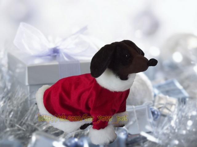 Новогодние костюмчики для собачек