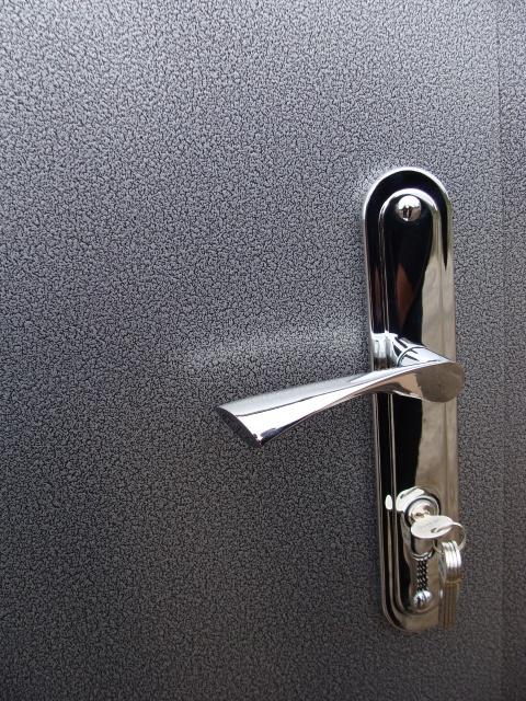 Двери входные из металла.порошковая покраска+пленка ПВХ .два листа металла.